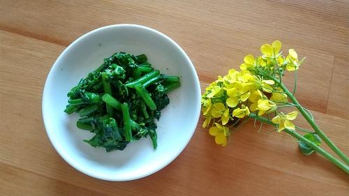 小松菜の花とナムル